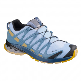 Zapatillas trail Salomon XA Pro 3D v8 GTX azul mujer