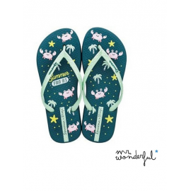 Chanclas Ipanema +Mr. Wonderful azul/verde mujer