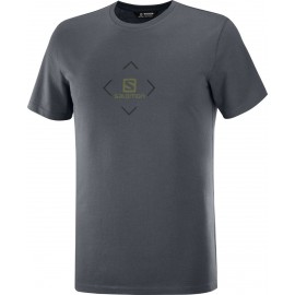 Camiseta outdoor Salomon Cotton Tee gris hombre