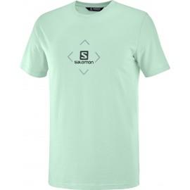 Camiseta outdoor Salomon Cotton Tee verde hombre