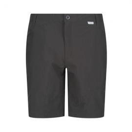 Pantalon senderismo Highton Regatta gris hombre