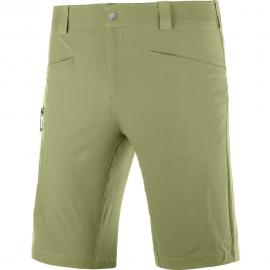 Pantalón corto Salomon Wayfarer verde hombre
