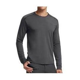 Camiseta Icebreaker Everyday Ls gris hombre
