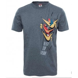 Camiseta M/C The North Face NSE Series gris hombre