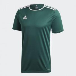 Camiseta adidas Entrada 18 Jsy verde/blanco niño