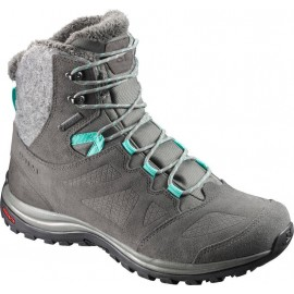 Botas calientes Salomon Ellipse Winter GTX gris mujer