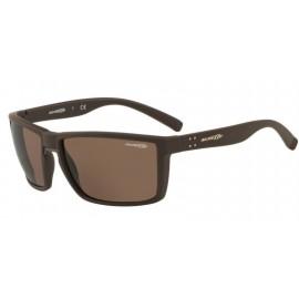 Gafas Arnette Prydz An4253 257073 marrón