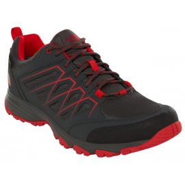 Zapatillas trekking The North Face Venture FH GTX gris/rojo