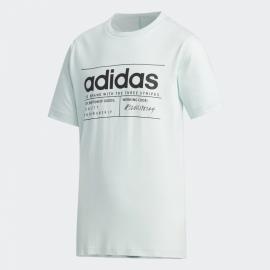 Camiseta adidas BB T verde claro niño