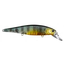 POINTER 100 H3 - F.G.Sunfish